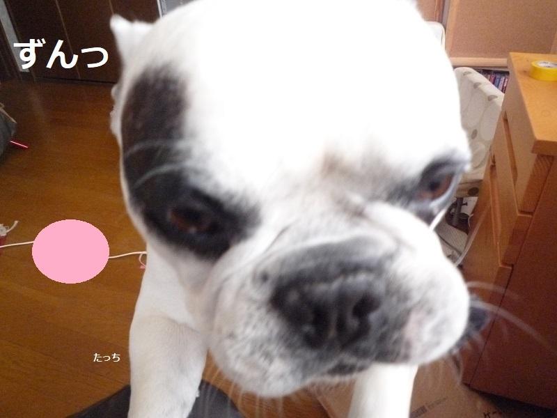 にこら201011to201108 2881