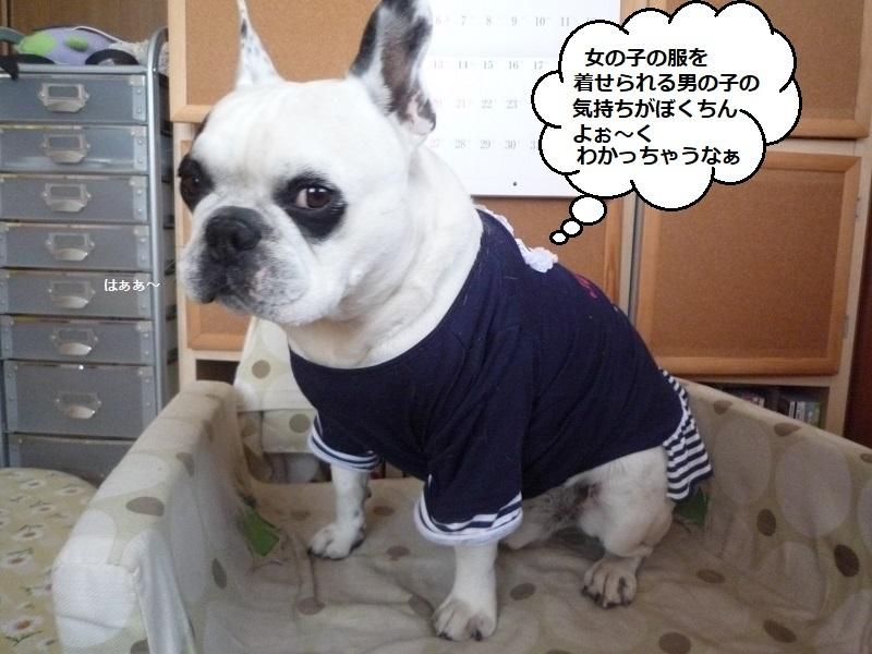 にこら201011to201108 2889