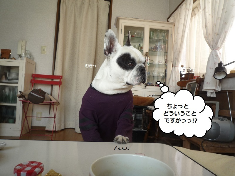 にこら201011to201108 2911
