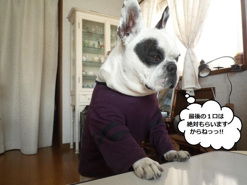にこら201011to201108 2912