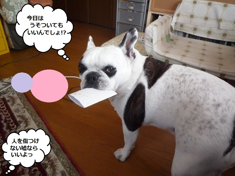 にこら201011to201108 2957