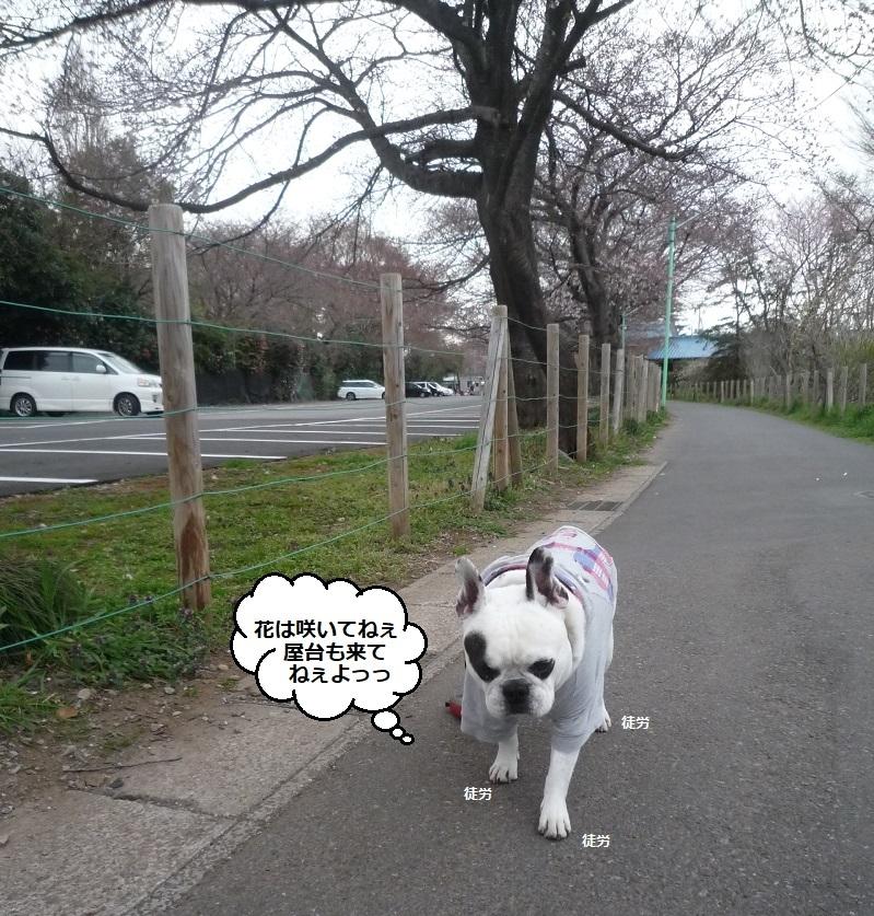 にこら201011to201108 2971