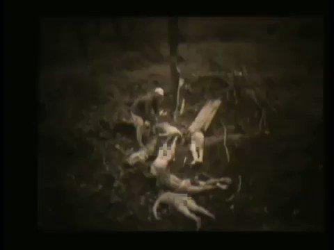일본군에 의한 조선인 위안부 학살(日本軍による朝鮮人慰安婦虐殺)