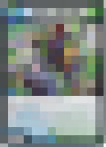 20180325モザイクイラストクイズ5
