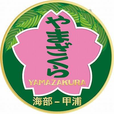 yamazakura-hm.jpg