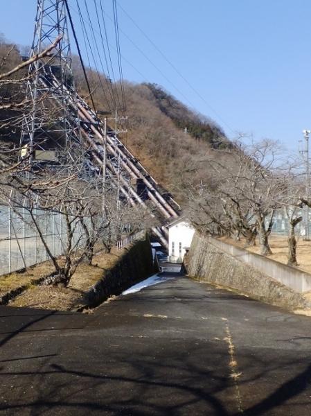 東京電力八ツ沢発電所