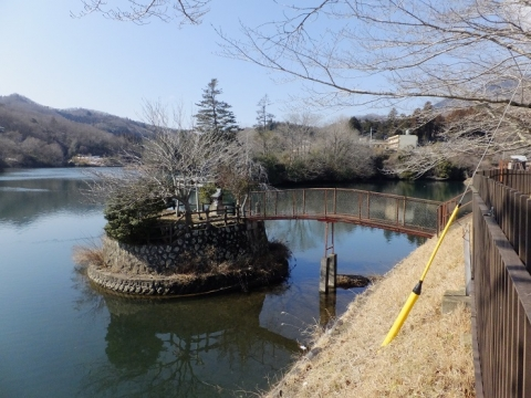 大野調整池に浮かぶ神社さん