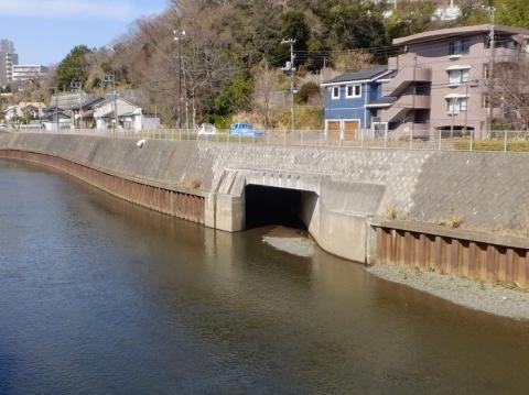 滝川分水路放流口