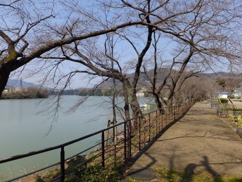 神奈川県立公園水の苑池