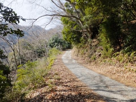 相模川左岸沿いの横浜水道みち