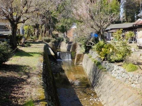 小松橋上流の小松川