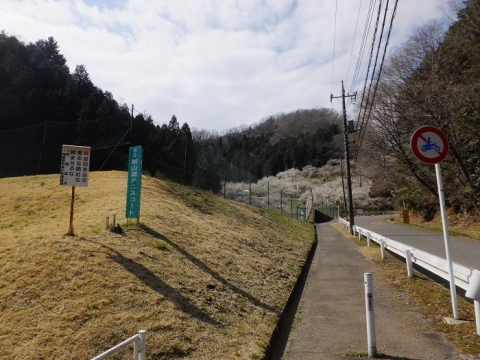 小松川砂防堰堤上流の道