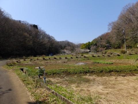 谷戸田を流れる穴川