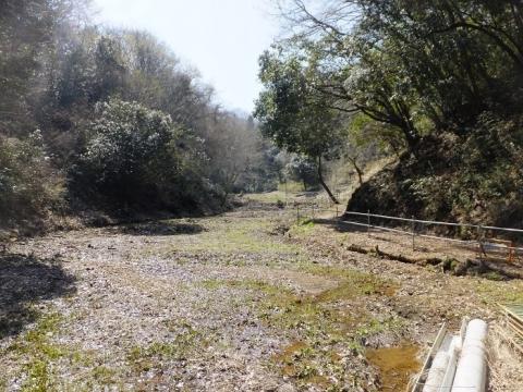 穴川支流のバンジ谷戸