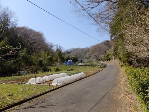 穴川が流れる谷戸の風景