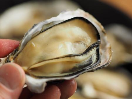殻付き牡蠣の蒸し方022