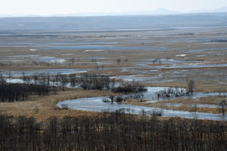 釧路湿原・・・