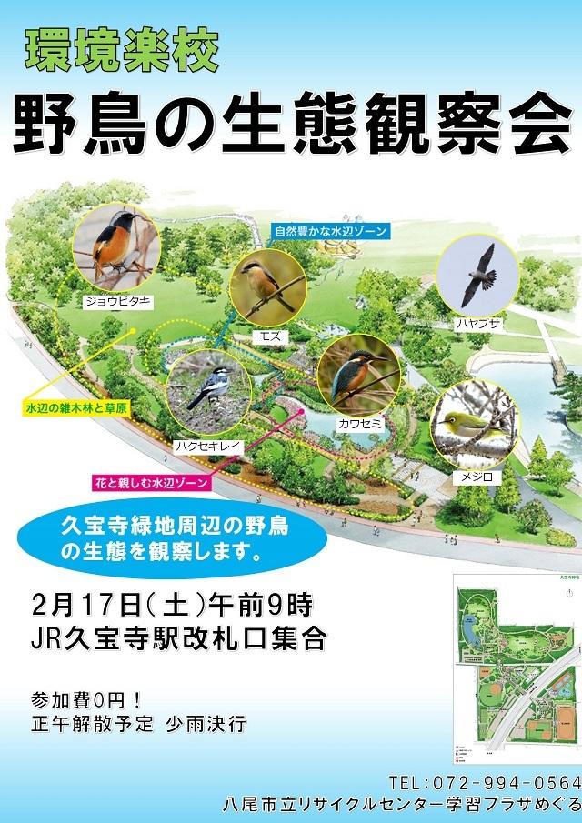 久宝寺緑地にて野鳥観察会を行います!