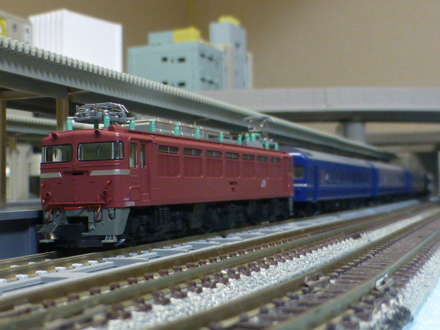 P1100794.jpg