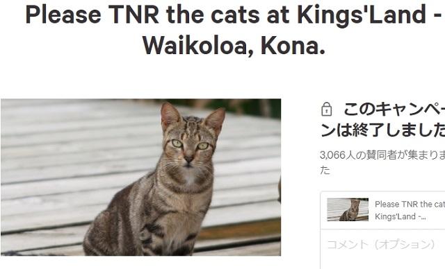 ハワイ TNR禁止