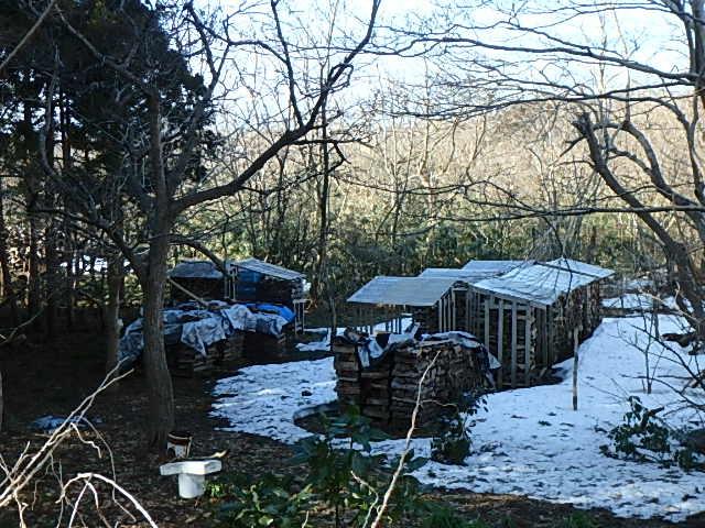 春の薪小屋3
