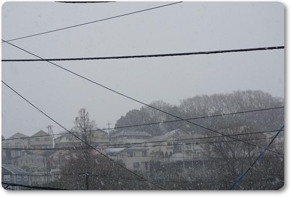 2018-3雪