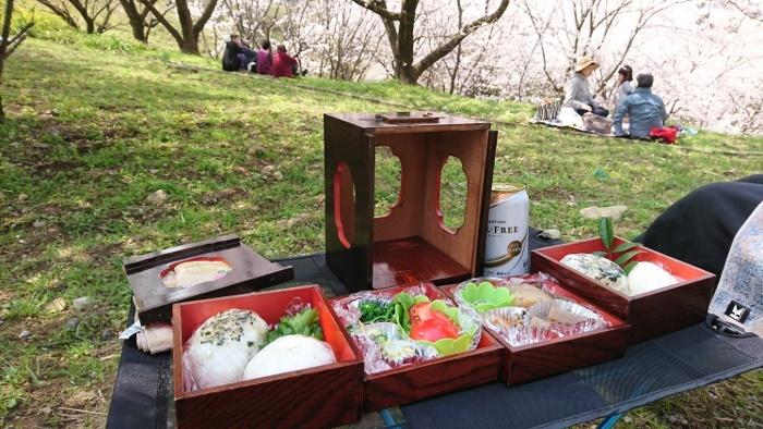 芸西桜公園