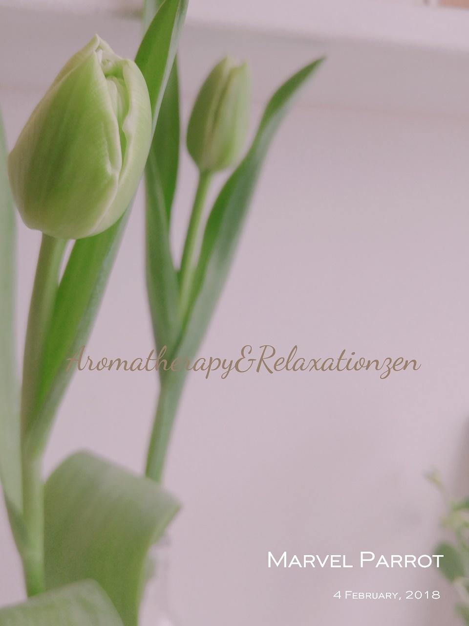 お花の販売とフラワーレッスンのお知らせ