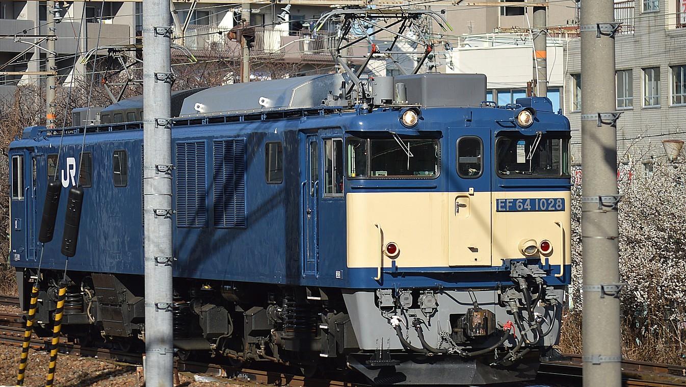 DSC_6108v.jpg