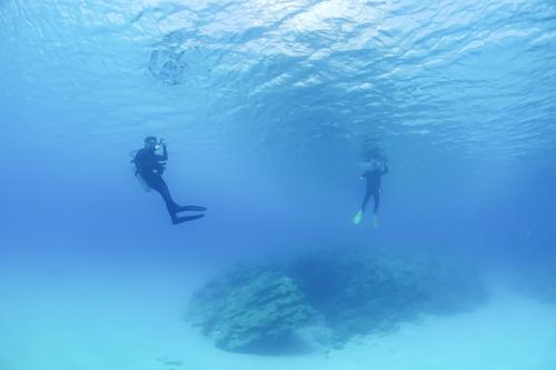 美ら海にする? エステにする? それとも…