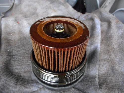 DSCN5300.jpg
