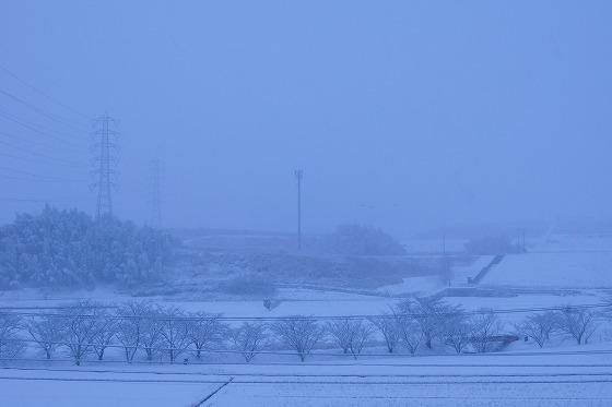 180125雪の朝0706