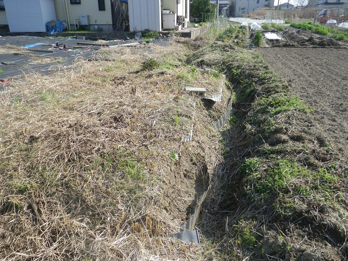 草刈り2_18_03_24