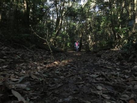 登るIMG_0026