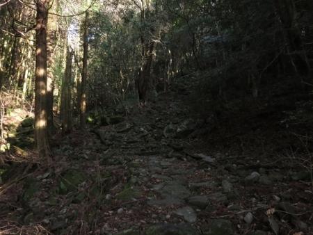 多良岳IMG_0271