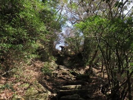 多良岳IMG_0307