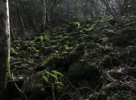 石割岳 2018-03-24 116