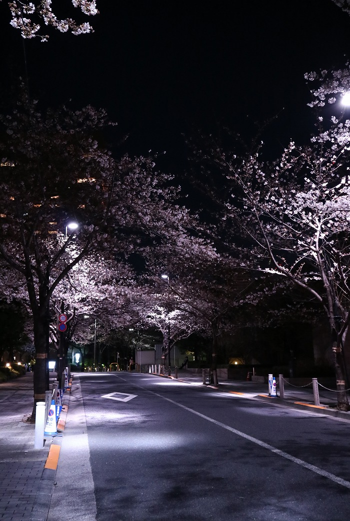 IMG_4898-s.jpg