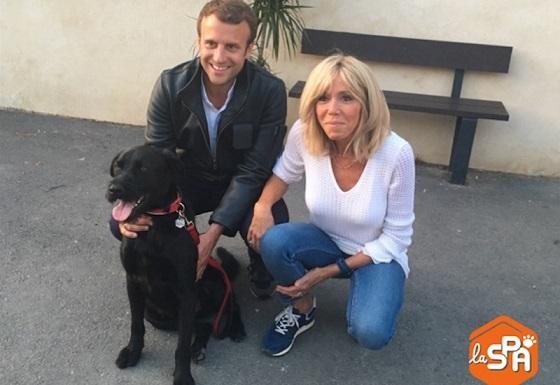 エマニュエル&ブリジット・マクロンの犬