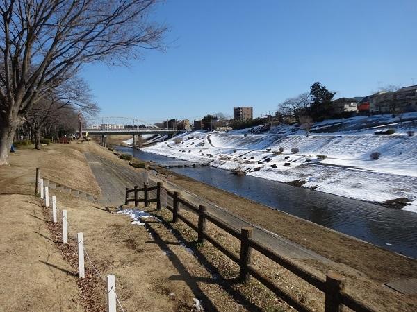 20180127利根運河と江戸川 (6)