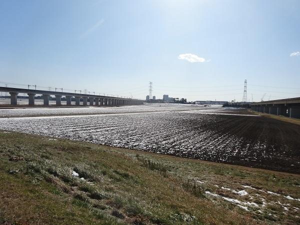 20180127利根運河と江戸川 (7)