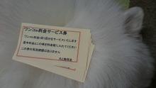 9DSC_0025.jpg