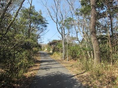 3・14山荘風景 (2)-3