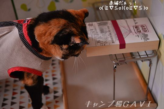 150707_赤福g1