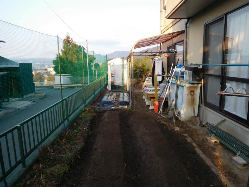 ss-耕作・畑・朝一