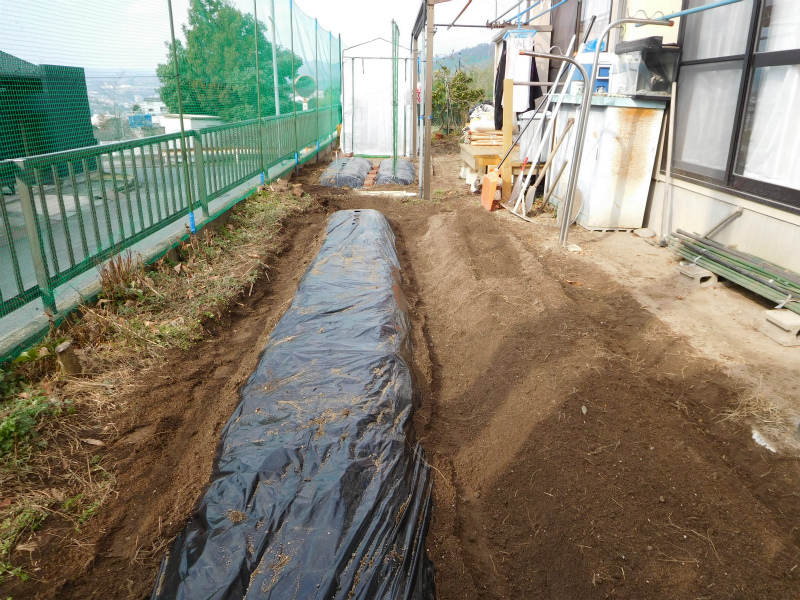 ss-耕作・畑2