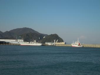 焼津港から富士山180311