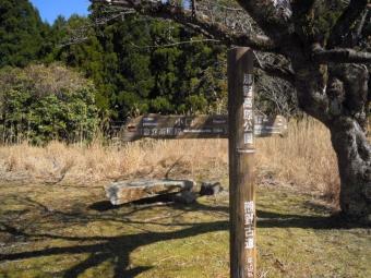 那智高原公園此処から山道に入る180317
