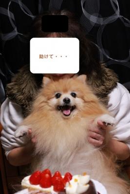 IMG_05160.jpg