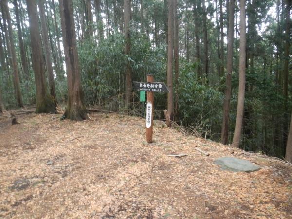 天覚山・大高山 012
